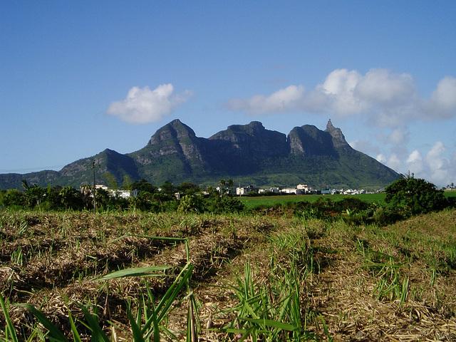 Mauritius024