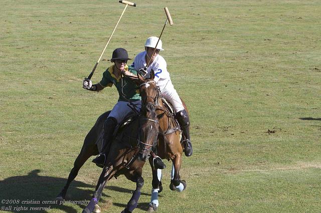 kurland polo 2007