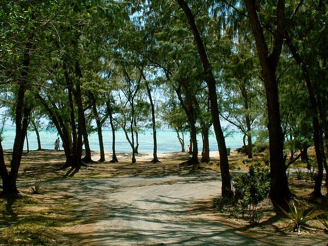 Mauritius003