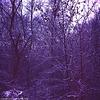 Dark Blue Winter, near Vojenska Nemocnice, Prague, CZ, 2007