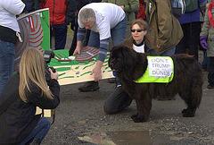 Menie Links - Protest walk 015