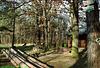 Cabin In Milichovsky Les, Haje, Prague, CZ, 2007