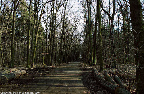 Trail To Uhrineves, Milichovsky Les, Haje, Prague, CZ, 2007