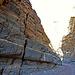 Titus Canyon (6672)