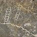 Titus Canyon Petroglyphs (1193)