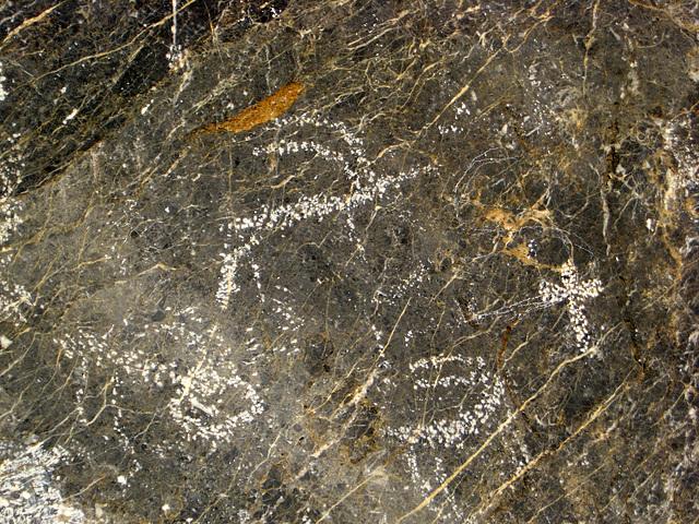 Titus Canyon Petroglyphs (1195)