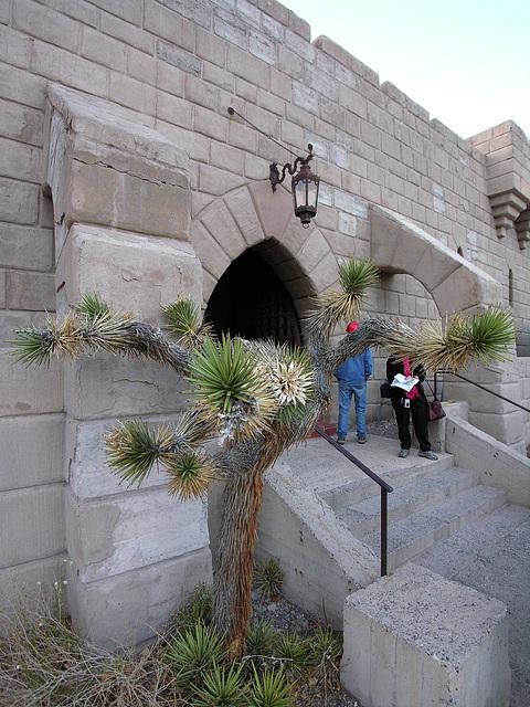 Scotty's Castle (6734)