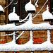 Neĝoĉapetoj - Schneehütchen