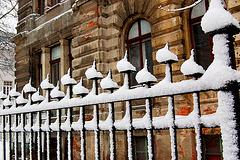 Neĝgardistoj - Schneewächter