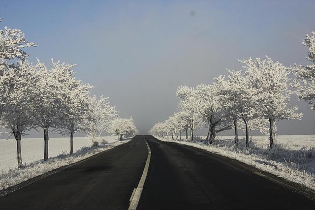 Winterliche Landstraße