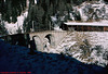 Swiss Railway Viaduct, Switzerland, 1998