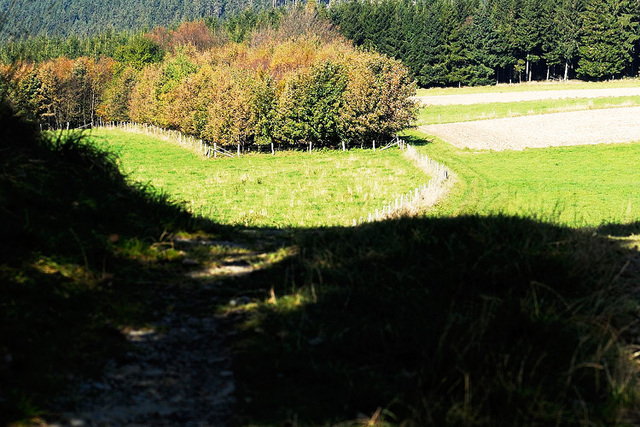 Hinter Küstelberg