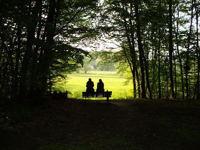 auf die Wiese sehen/ Couple looking out of forest on the meadow