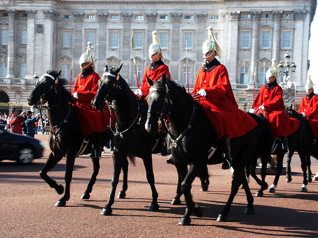 horse-guards
