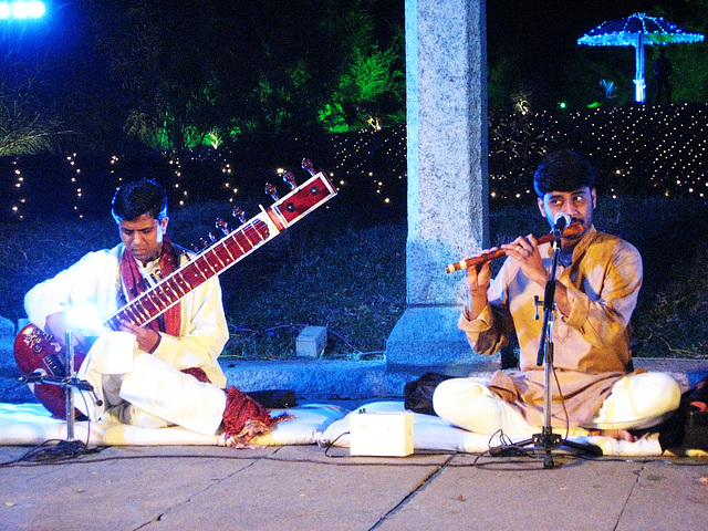Two musicians at a wedding reception
