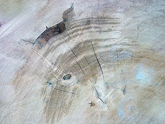 wooden abstract I