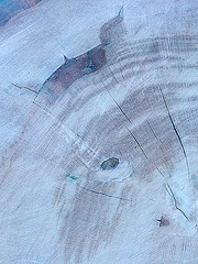 wooden abstract II