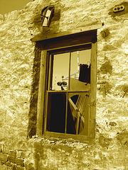 Vestiges de la Canbro - Région du Suroît  / Southwest region - Quebec, Canada / 12 octobre 2008 - Sepia