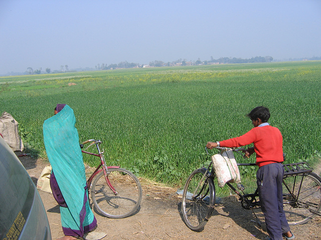 Field and bikes in Punjab