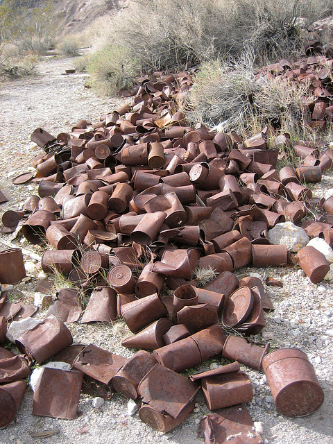Rhyolite Can Dump (8663)