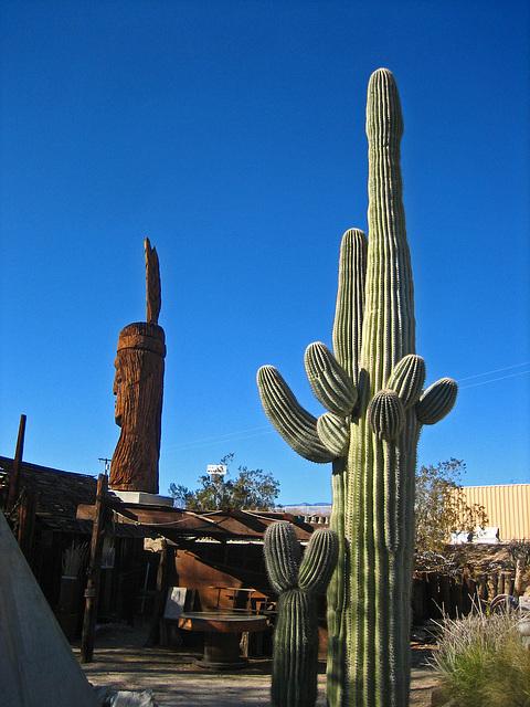 Cabot's Pueblo Museum (8186)