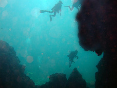 Diving into the cave