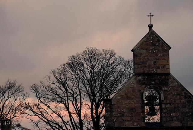 trees & church