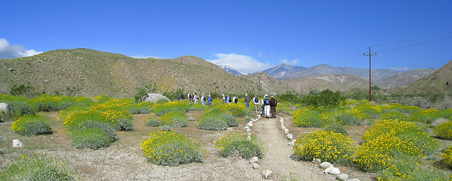 Mission Creek Preserve (0563)