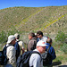 Mission Creek Preserve (0564)