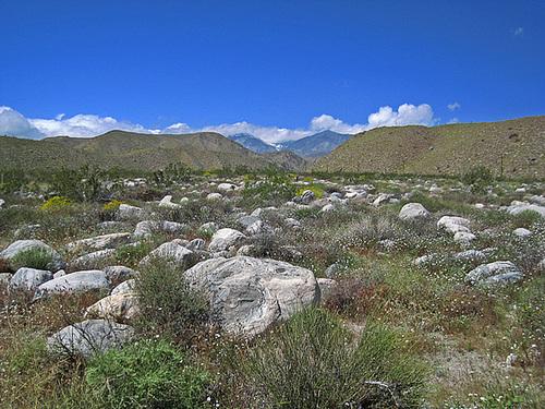 Mission Creek Preserve (0618)