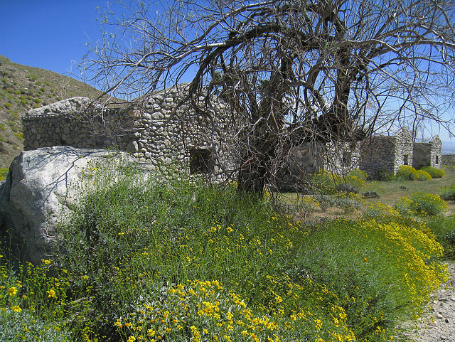 Mission Creek Preserve (0610)