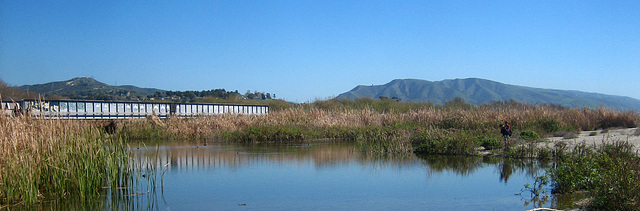 Lagoon at Trestles (9180)