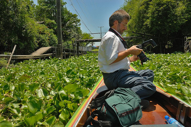 The way goes through tangly water hyacinths