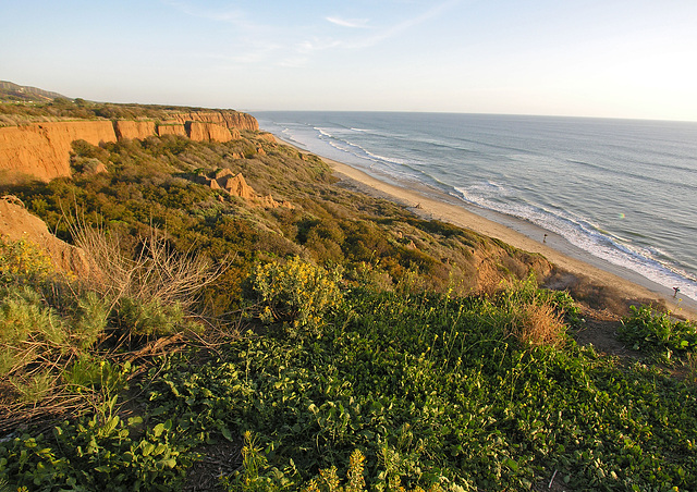 San Onofre Beach From Trail 1 (7104)