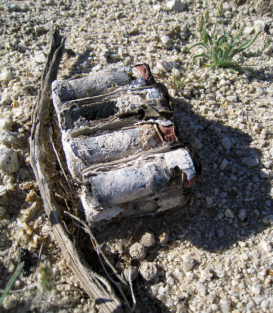Batteries? (0082)