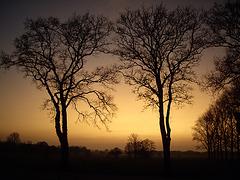 Sonnenuntergang / Sunset