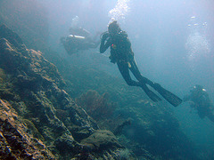 Diving along the rock fall