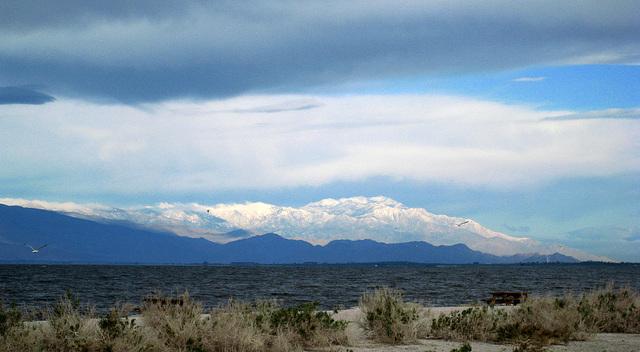 Snow on Mt. San Jacinto (0218)