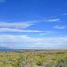 View Toward Palm Springs (0252)