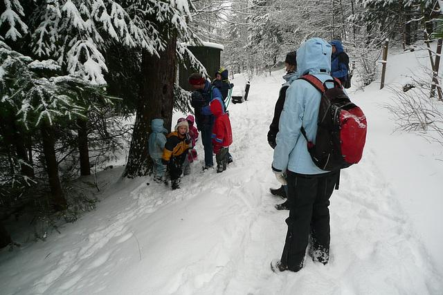 Schnee bei Geising