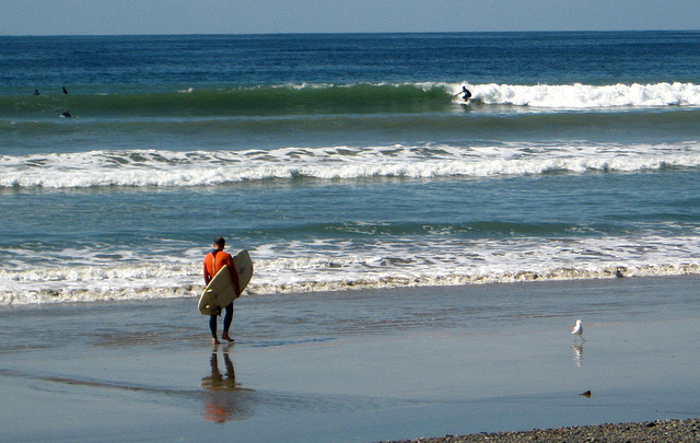Ky Entering Surf (1309)