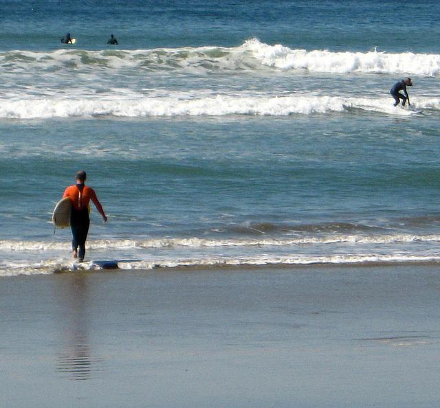Ky Entering Surf (1312)