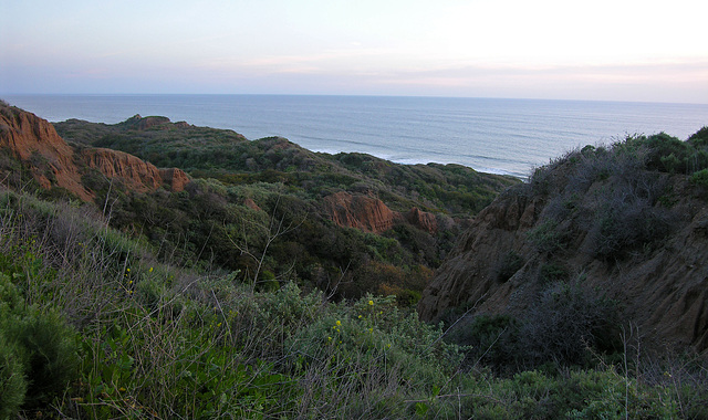 San Onofre (7111)