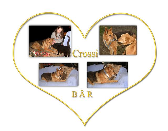 Cross in Germany ;-)))