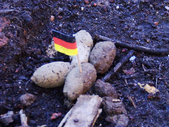 Deutsche Hundescheisse