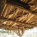 Oasis Springs Ramada Roof (0278)