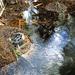 Oasis Springs Water Pipe (0266)