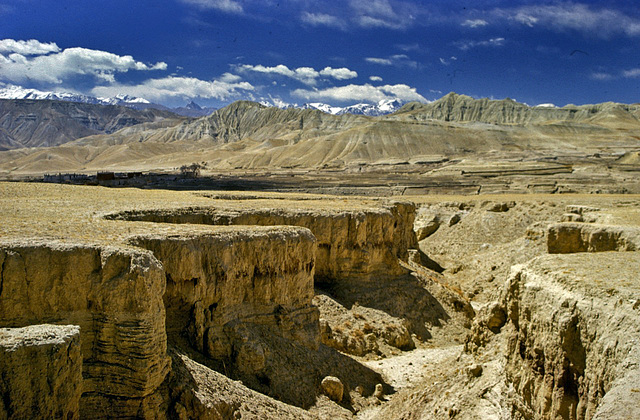 Landscape north of Mustang