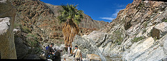 Boyd Deep Canyon (4)