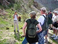 Boyd Deep Canyon (9281)